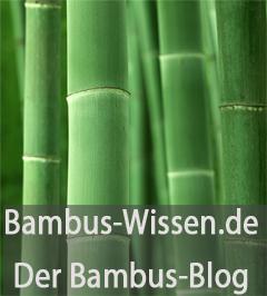 Das Lexikon zum Thema Bambus als nachwachsender Rohstoff